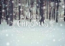 Kerstmisachtergrond met sparren en vage achtergrond van de winter met tekst Vrolijke Kerstmis en Gelukkig Nieuwjaar De ijzige win Stock Fotografie