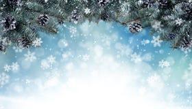 Kerstmisachtergrond met sparrentakken en kegels Stock Foto