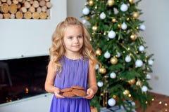 Kerstmisachtergrond, nieuw jaarconcept royalty-vrije stock foto's