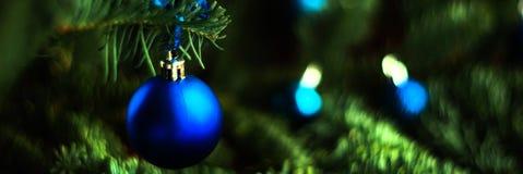 Kerstmisbal op de takkenspar Het formaat van de banner, snakt wijd royalty-vrije stock afbeeldingen