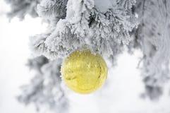 Kerstmisbal op ijzige sparrentakken De achtergrond van het de winteronduidelijke beeld Royalty-vrije Stock Afbeelding