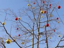 Kerstmisballen op een naakte boom Royalty-vrije Stock Foto