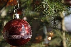 Kerstmisbol Stock Fotografie