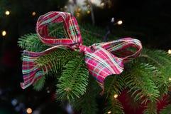 Kerstmisboog het hangen op een spar Royalty-vrije Stock Fotografie