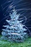 Kerstmisboom van de vorst Royalty-vrije Illustratie