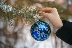 Kerstmisconcept met hand en blauwe bal - het stuk speelgoed van de Kerstmisboom Kerstmisbal in vrouwelijke hand Royalty-vrije Stock Foto's