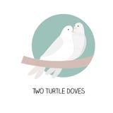 12 Kerstmisdag - twee schildpadduiven Royalty-vrije Stock Foto