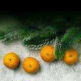 Kerstmisdecor, mandarijn met achtergrond voor tekst Royalty-vrije Stock Fotografie