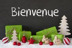 Kerstmisdecoratie, Cement, Sneeuw, Bienvenue Means Welcome Royalty-vrije Stock Foto's