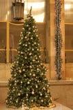 Kerstmisdecoratie, Kerstboom royalty-vrije stock foto
