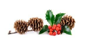 Kerstmisdecoratie met hulstbessen en larikskegels op wit Stock Fotografie