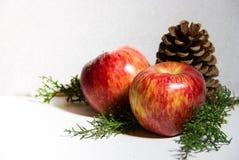 Kerstmisdecoratie met rode appelenananassen en van pijnboombomen witte achtergrond Stock Afbeeldingen