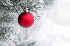 Kerstmisdecoratie op de pijnboomtak Stock Afbeeldingen