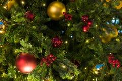 Kerstmisdecoratie op de takkenspar Stock Foto