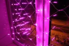 Kerstmisdecoratie voor de vensters - roze lichten Royalty-vrije Stock Fotografie