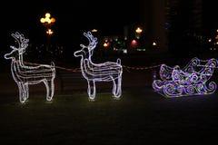 Kerstmisdeers Royalty-vrije Stock Afbeeldingen