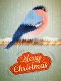 Kerstmisetiket op een gebreide Goudvink Eps 10 Stock Afbeeldingen