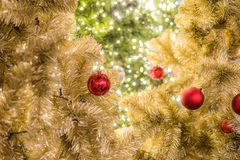 Kerstmisfestival in Bangkok Gouden Kerstboom met rode B Royalty-vrije Stock Foto's