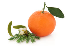 Kerstmisfruit stock foto
