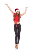 Kerstmisgeluk Royalty-vrije Stock Afbeelding