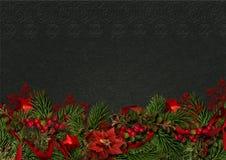 Kerstmisgrens met hulst en poinsettia op een donkere achtergrond Stock Foto's