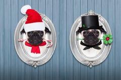 Kerstmishond als Kerstman en schoorsteenveger Stock Foto