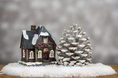 Kerstmishuis en pijnboom Royalty-vrije Stock Foto's