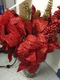 Kerstmisinstallatie Stock Foto