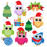 Kerstmisinzameling van kleurrijke uilen en elementen Royalty-vrije Stock Fotografie
