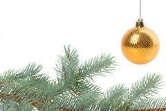 Kerstmiskader met sparren op witte achtergrond wordt geïsoleerd die Royalty-vrije Stock Afbeeldingen
