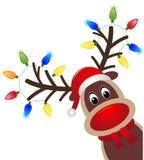 Kerstmiskarakter Rudolph met licht Hoofd van Gelukkig rendier met rode neus royalty-vrije illustratie