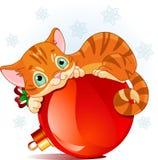 Kerstmiskatje Royalty-vrije Stock Foto's