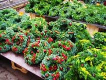 Kerstmiskronen in Lapland Stock Afbeelding