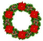 Kerstmiskroon met poinsettia Stock Foto