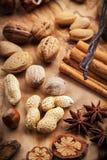 Kerstmiskruiden en noten Stock Afbeeldingen