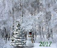 Kerstmislandschap met embleem 2017 Stock Foto's