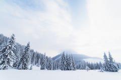 Kerstmislandschap met sparren in de bergen Royalty-vrije Stock Afbeeldingen