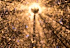 Kerstmislicht in Sibiu, Roemenië Stock Foto