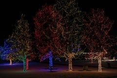 Kerstmislichten Stock Foto