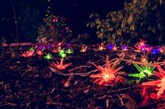 Kerstmislichten in tuin Stock Foto's