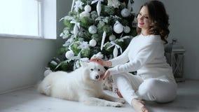 Kerstmismeisje met huisdier het stellen op achtergrond van Kerstmisboom met wit speelgoed in comfortabele atmosfeer bij vooravond stock footage