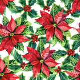 Kerstmispoinsettia, waterverfbloem stock illustratie