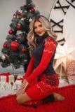 Kerstmisportret van aantrekkelijke vrouw met krullend kapsel Het mooie blonde meisje met lange haarstijl draagt in warm rood brei royalty-vrije stock foto