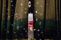Kerstmisrecitatie Royalty-vrije Stock Foto