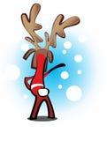 Kerstmisrendier Royalty-vrije Stock Fotografie