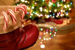 Kerstmisriet Stock Afbeelding