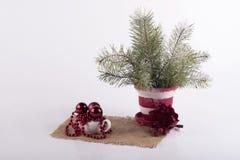 Kerstmissamenstelling van Kerstboomtakken en decoratie Stock Foto's