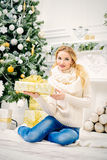 Kerstmisschoonheid Stock Foto's