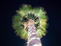 Kerstmisslingers en lichte verlichting op een palm bij nacht doubai stock afbeelding