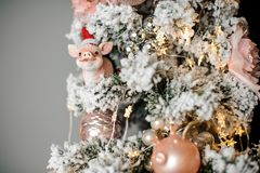 Kerstmisspar met sneeuw wordt met roze gekleurde modieuze stuk speelgoed varkens wordt verfraaid behandeld dat stock fotografie